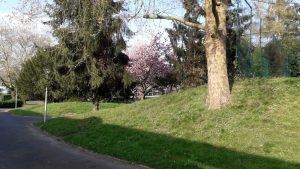 image du parc